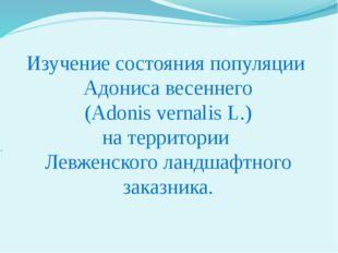 Изучение состояния популяции Адониса весеннего (Adonis vernalis L.) на террит