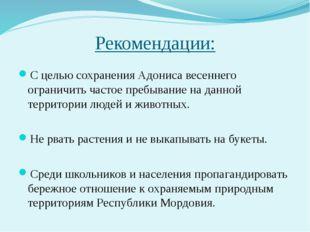 Рекомендации: С целью сохранения Адониса весеннего ограничить частое пребыван