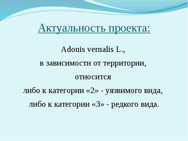 Актуальность проекта: Adonis vernalis L., в зависимости от территории, относи...