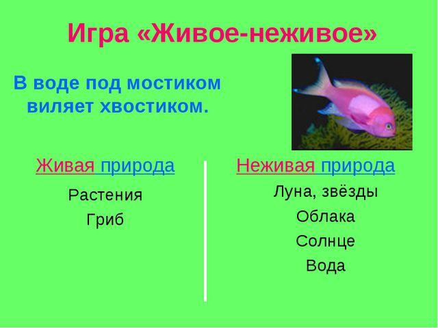Игра «Живое-неживое» В воде под мостиком виляет хвостиком. Живая природа Нежи...