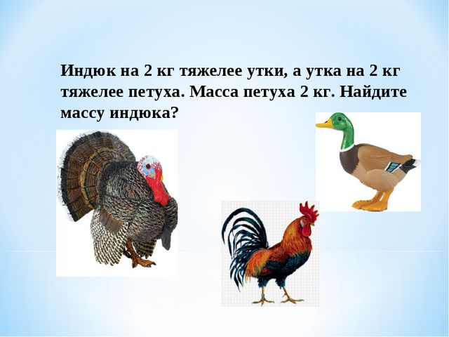 Индюк на 2 кг тяжелее утки, а утка на 2 кг тяжелее петуха. Масса петуха 2 кг....