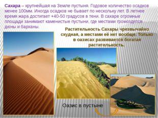 Сахара – крупнейшая на Земле пустыня. Годовое количество осадков менее 100мм.