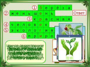 2 6 5 4 3 1 Ответ Дерево – символ нашей Родины. Ценное лекарственное растение