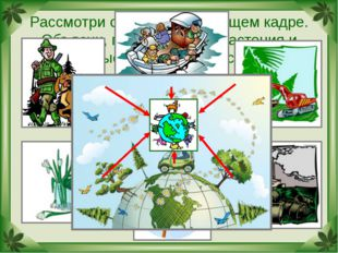 Рассмотри схему на следующем кадре. Объясни, почему многие растения и животны
