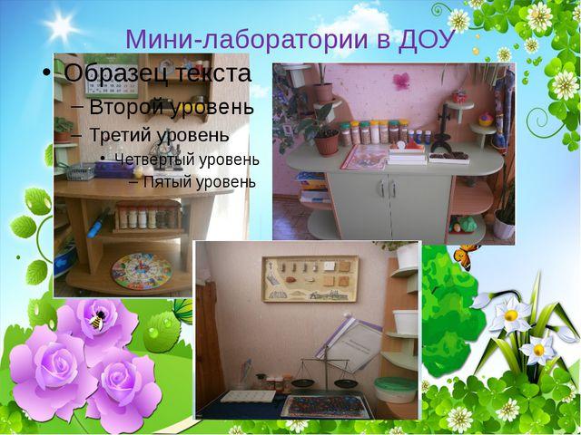 Мини-лаборатории в ДОУ