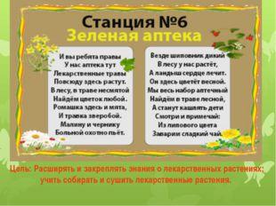 Цель: Расширять и закреплять знания о лекарственных растениях; учить собирать