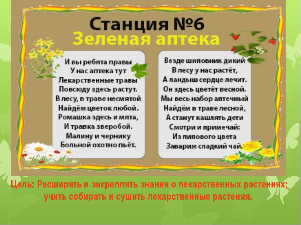 Цель: Расширять и закреплять знания о лекарственных растениях; учить собирать...