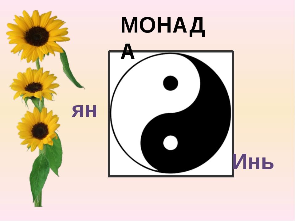 МОНАДА Инь ян