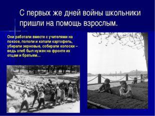 С первых же дней войны школьники пришли на помощь взрослым. Они работали вме