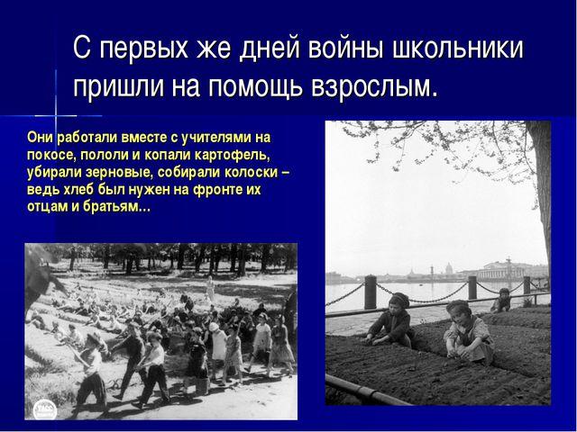 С первых же дней войны школьники пришли на помощь взрослым. Они работали вме...