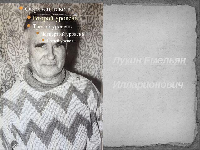 Лукин Емельян Илларионович