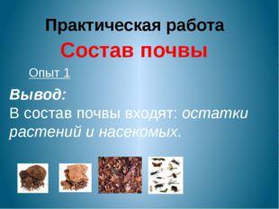 Практическая работа Состав почвы Опыт 1 Вывод: В состав почвы входят: остатки