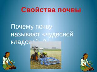 Свойства почвы Почему почву называют «чудесной кладовой»?