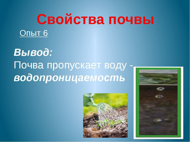 Свойства почвы Опыт 6 Вывод: Почва пропускает воду - водопроницаемость