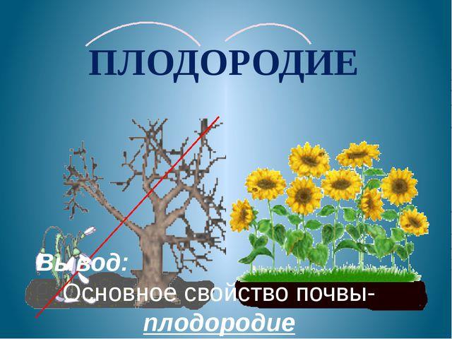 ПЛОДОРОДИЕ Вывод: Основное свойство почвы- плодородие