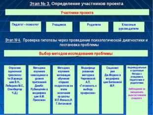 Этап № 3. Определение участников проекта Этап №4. Проверка гипотезы через про