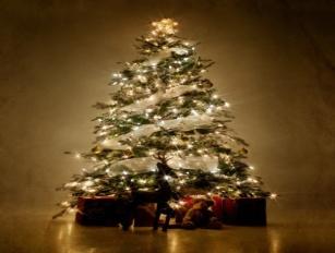 F:\все материалы для защиты 1 категории Настя\Работа с родителями\Классный час Сказочное рождество\Показ картинок. печатать\Новогодняя елка в британии.jpg