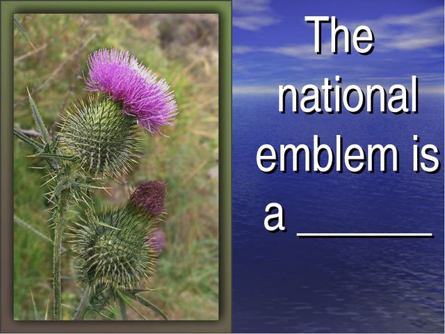 The national emblem is a ______