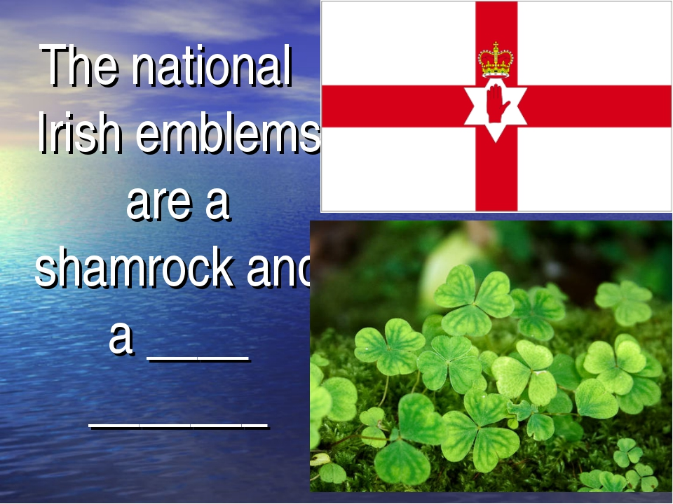 The national Irish emblems are a shamrock and a ____ _______