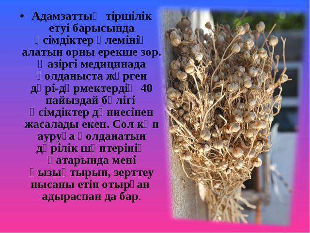 Адамзаттың тіршілік етуі барысында өсімдіктер әлемінің алатын орны ерекше зор...