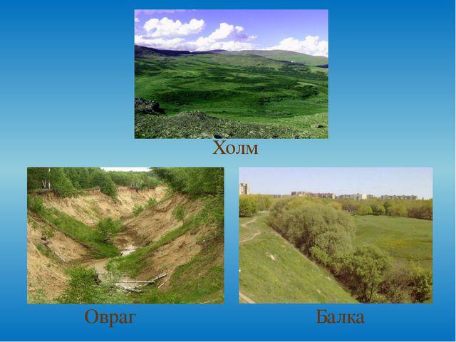 Овраг Балка Холм