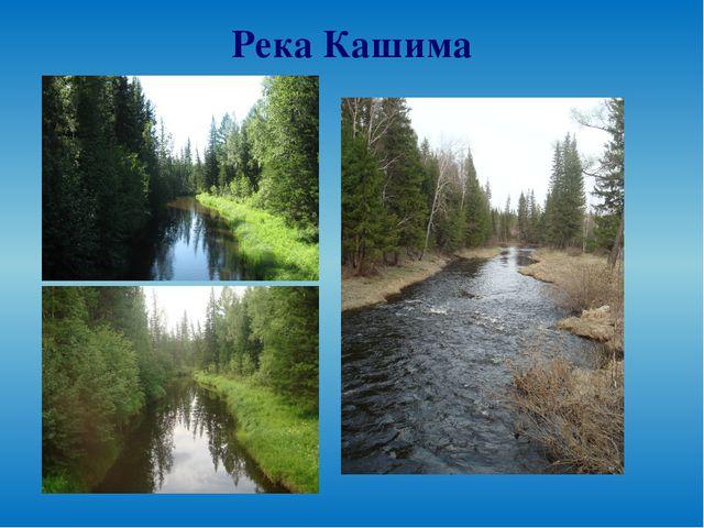 Река Кашима