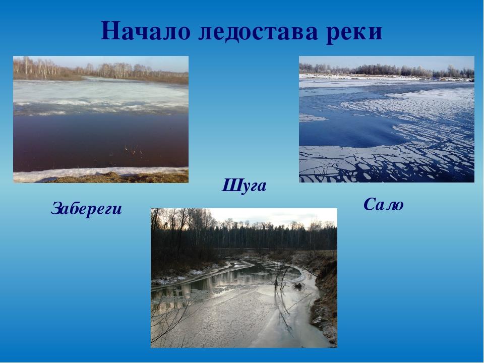 Начало ледостава реки Забереги Шуга Сало