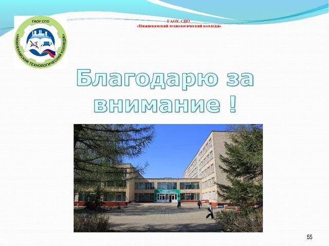 * ГАОУ СПО «Нижнекамский технологический колледж»