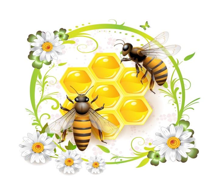 http://forum.infostart.ru/upload/main/0c4/honeycombs_bees_01.jpg