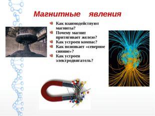 Магнитные явления Как взаимодействуют магниты? Почему магнит притягивает желе