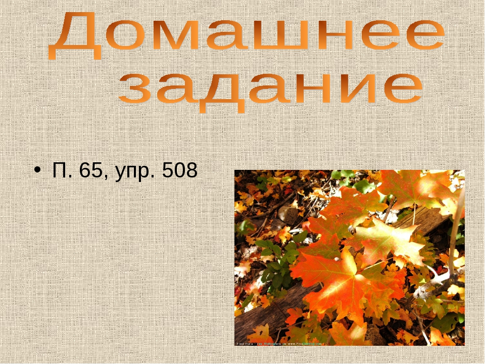 П. 65, упр. 508