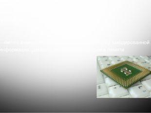 Процессор – «мозг» компьютера. Он выполняет обработку закодированной информац