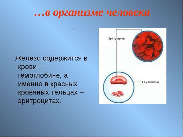 …в организме человека Железо содержится в крови – гемоглобине, а именно в кра...