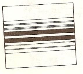 сканирование0012.jpg