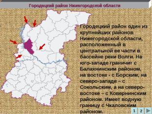 Городецкий район Нижегородской области Городецкий район один из крупнейших ра
