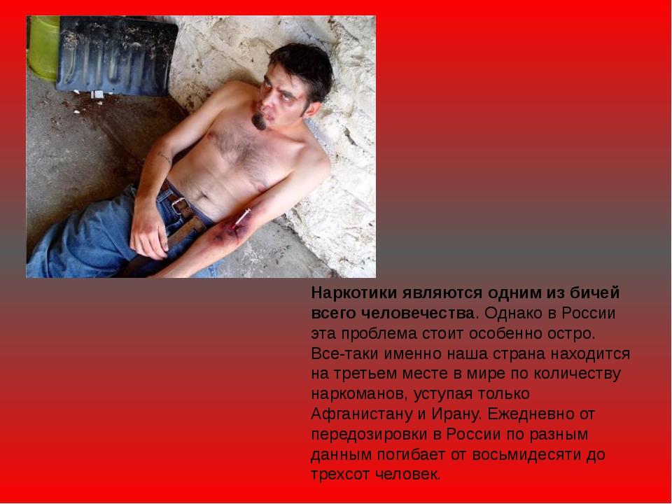 Наркотики являются одним из бичей всего человечества. Однако в России эта про...