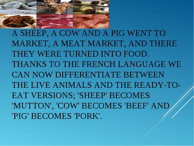 ASHEEP, ACOWAND APIGWENT TO MARKET, A MEAT MARKET, AND THERE THEY WERE T...