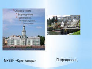 МУЗЕЙ «Кунсткамера» Петродворец