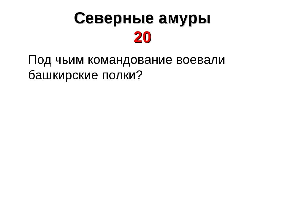 Под чьим командование воевали башкирские полки?