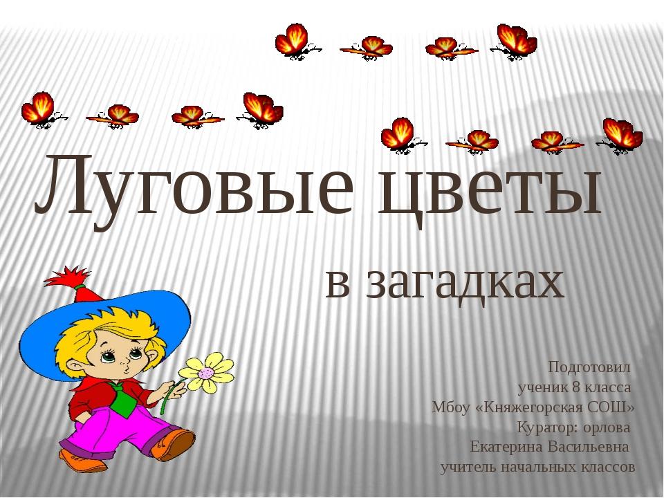 Подготовил ученик 8 класса Мбоу «Княжегорская СОШ» Куратор: орлова Екатерина...