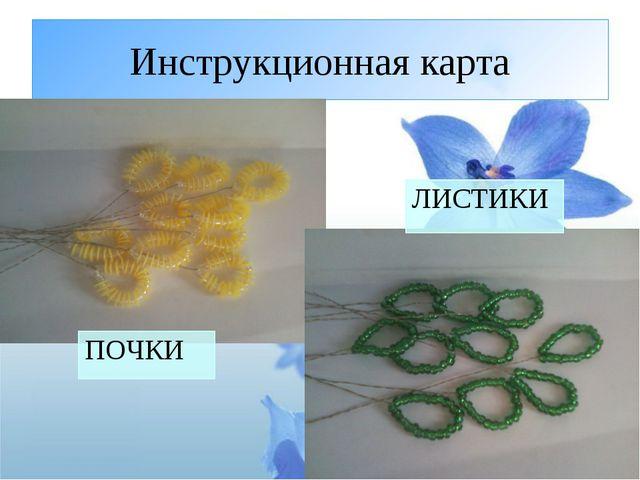 Инструкционная карта ПОЧКИ ЛИСТИКИ