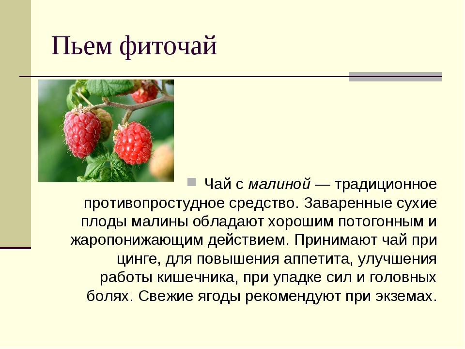 Пьем фиточай Чай с малиной — традиционное противопростудное средство. Заварен...