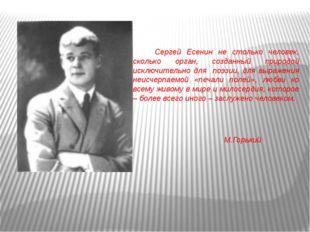 Сергей Есенин не столько человек, сколько орган, созданный природой исключит