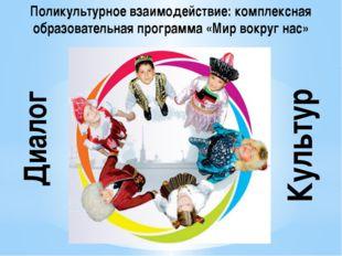 Поликультурное взаимодействие: комплексная образовательная программа «Мир вок