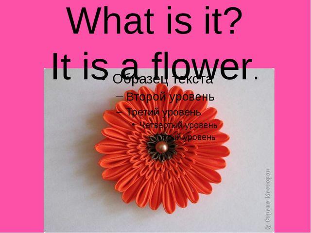 What is it? It is a flower.