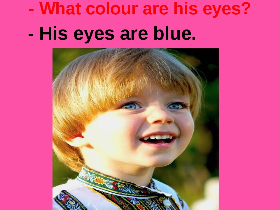 - What colour are his eyes? - His eyes are blue.