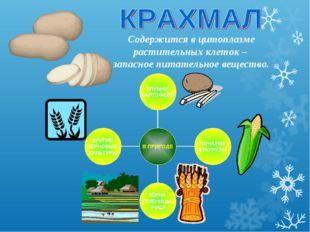 Содержится в цитоплазме растительных клеток – запасное питательное вещество.
