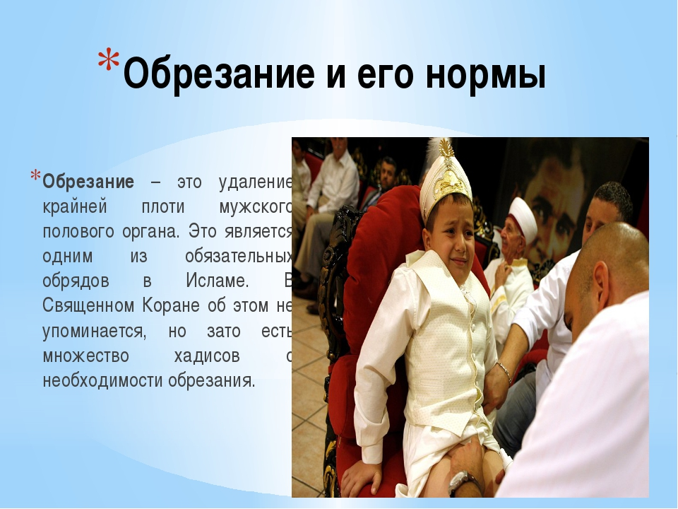 lyubitelskoe-domashnee-rossiya