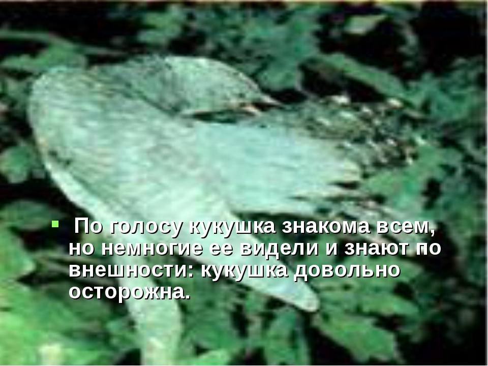 По голосу кукушка знакома всем, но немногие ее видели и знают по внешности:...