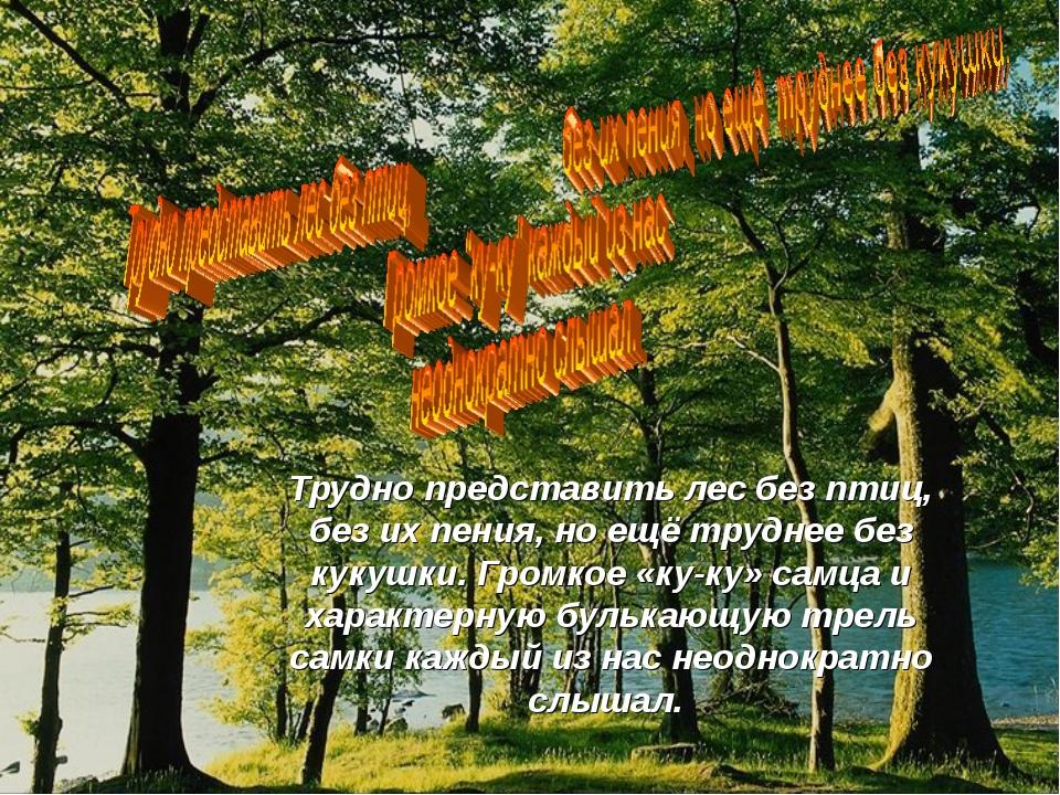 Трудно представить лес без птиц, без их пения, но ещё труднее без кукушки. Гр...